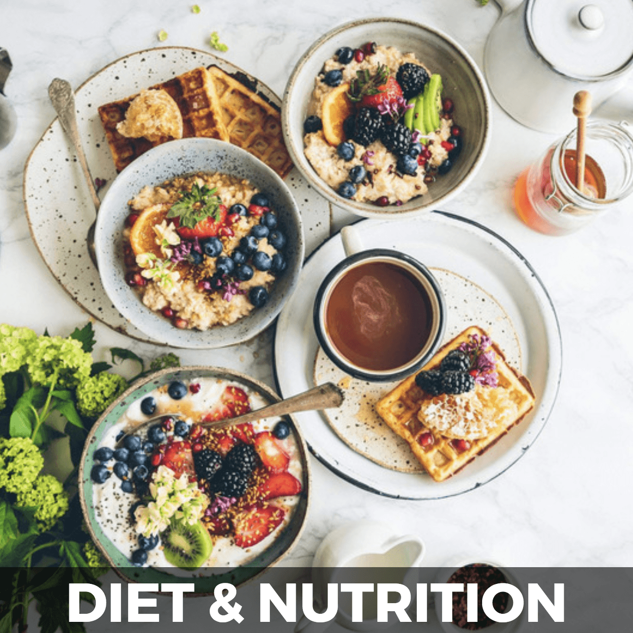 Diet and nutrition